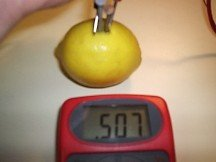 Lemon Battery with Zinc and Steel Terminals